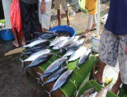 Harga Berbagai Ikan di Pasar Arumbai Mulai Menurun
