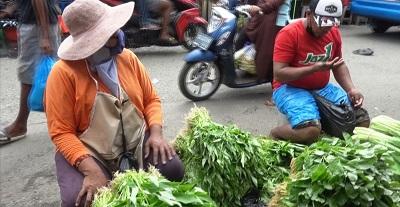 Masih Stabil Harga Berbagai Jenis Sayuran di Kota Ambon